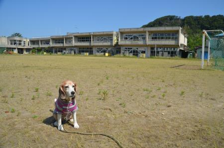 20200529竹岡小学校09
