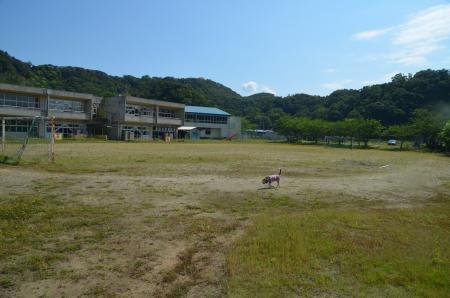 20200529竹岡小学校13