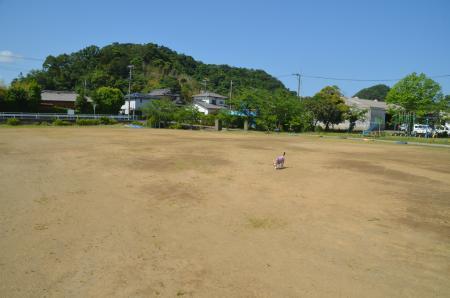 20200529天神山小学校10