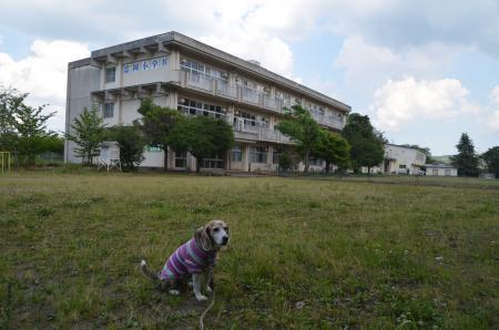 20200529富岡小学校10