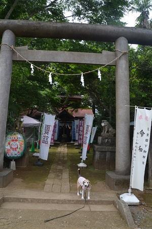 20200604冨里香取神社01