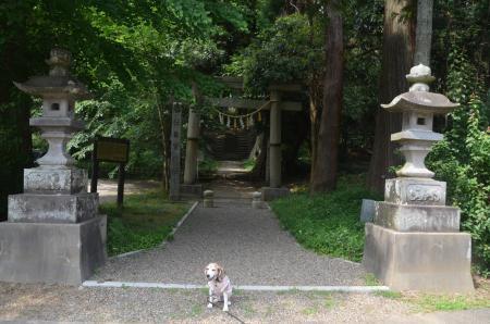 20200604東金日吉神社01