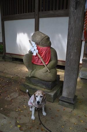 20200604東金日吉神社13