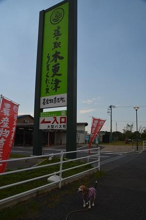 20200529道の駅木更津うまくたの里03