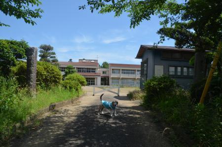 20200617福田小学校04
