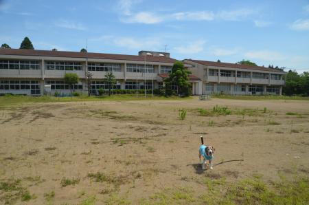 20200617福田小学校08