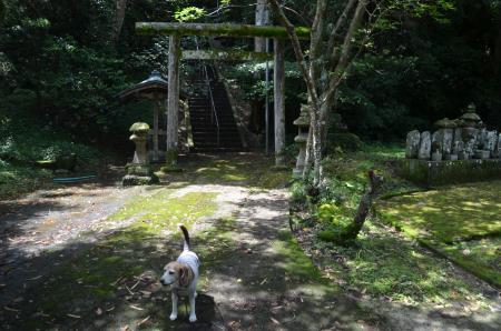 20200620坂田熊野神社01