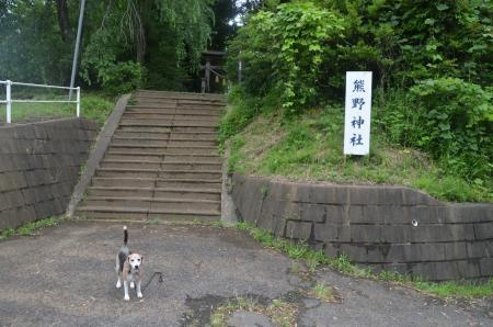 20200623成田豊豊住野神社01