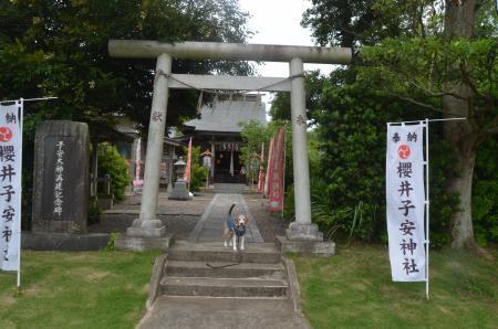 20200624桜井子安神社02