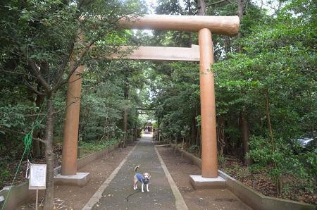 20200624宮川熊野神社04