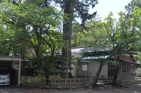 20200629宗像神社33
