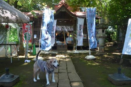 20200702冨里香取神社056