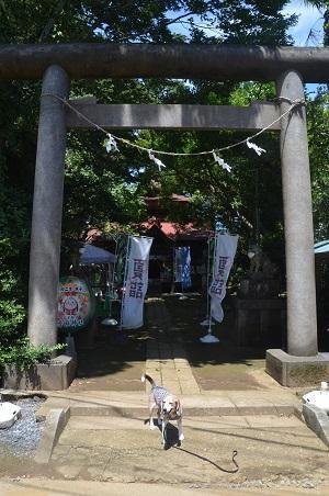 20200702冨里香取神社01