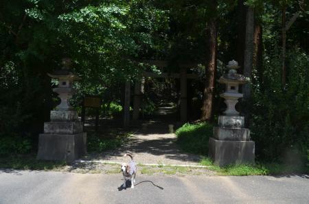 20200702東金日吉神社01