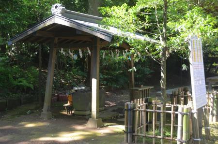 20200702成田豊住熊野神社05