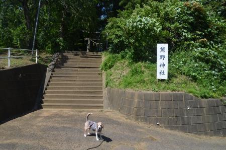 20200702成田豊住熊野神社01