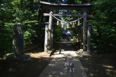20200702成田豊住熊野神社02