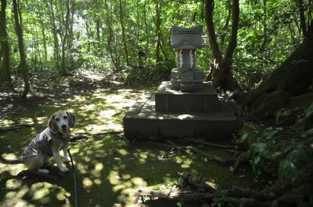 20200702成田豊住熊野神社11