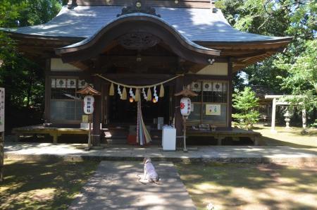 20200702成田豊住熊野神社09