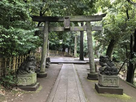 20200709渋谷氷川神社04