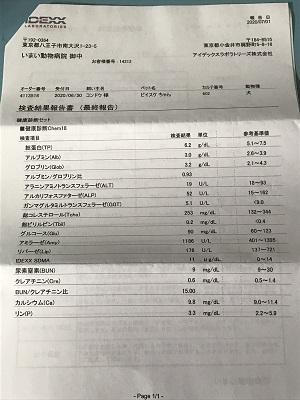 20200709健康診断結果04