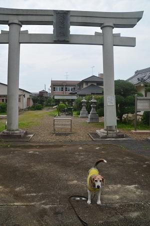 20200710鴻徳神社05