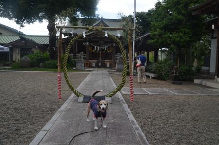 20200628日野若宮神社05