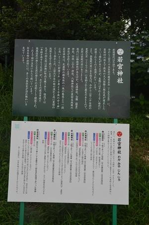 20200628日野若宮神社03