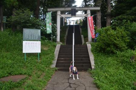 20200628日野若宮神社01