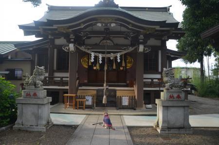 20200628日野若宮神社07