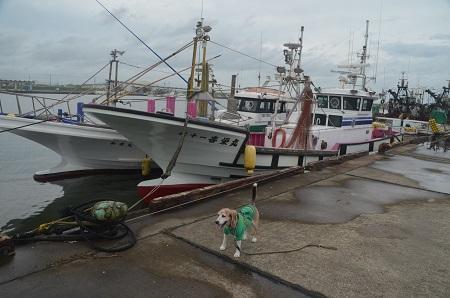 20200714片貝漁港06