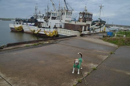 20200714片貝漁港05