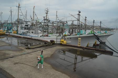 20200714片貝漁港08