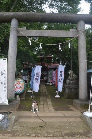 20200727冨里香取神社 高松入神社01