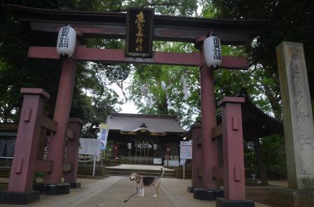 20200727麻賀多神社04