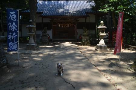 20200803東金日吉神社13