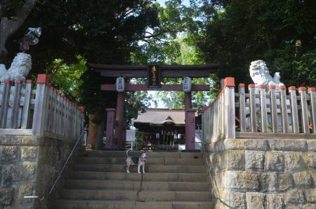 20200819麻賀多神社01