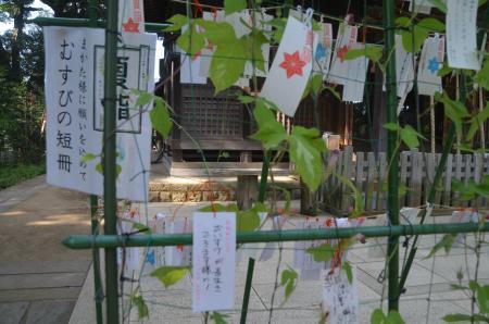 20200819麻賀多神社11