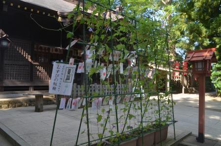 20200819麻賀多神社10