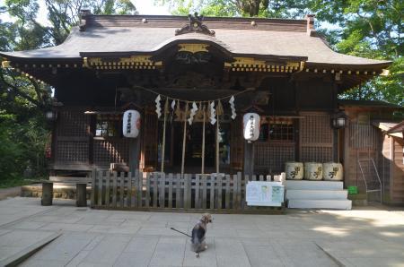 20200819麻賀多神社09