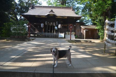 20200819麻賀多神社07