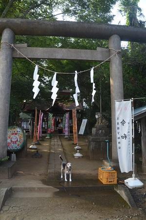 20200822冨里香取神社01