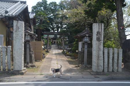 20200824関宿香取神社01