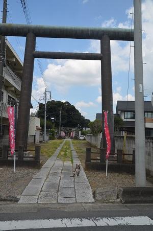 20200824境香取神社02