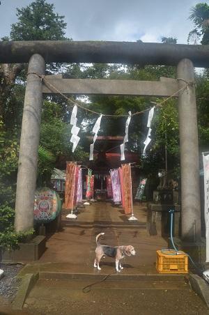 20200902冨里香取神社02