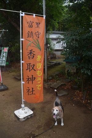 20200902冨里香取神社07