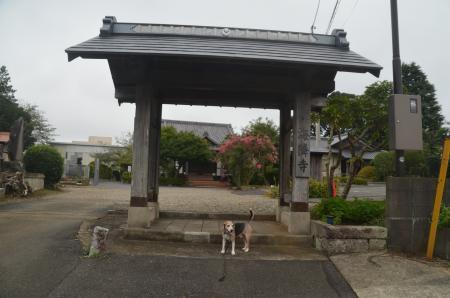 20200913海燐寺02