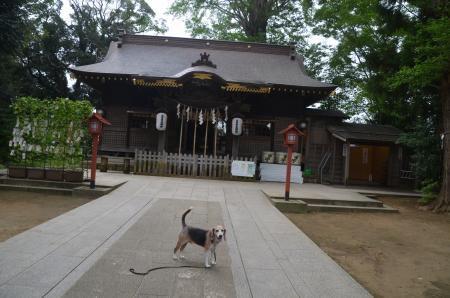 20200913麻賀多神社06