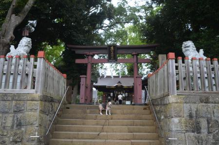 20200913麻賀多神社02