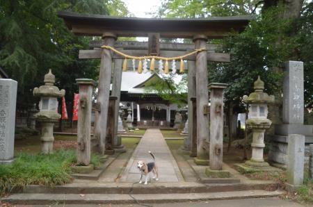 20200917沓掛香取神社05